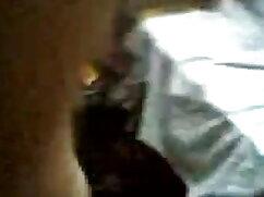 পাখি আরো ছোট ছেলে মেয়ে চুদা চুদি প্রচণ্ড উত্তেজনা প্রয়োজন