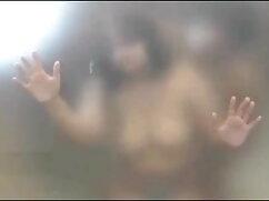 সুন্দরী বাগানে চুদাচুদি ভিডিও বালিকা
